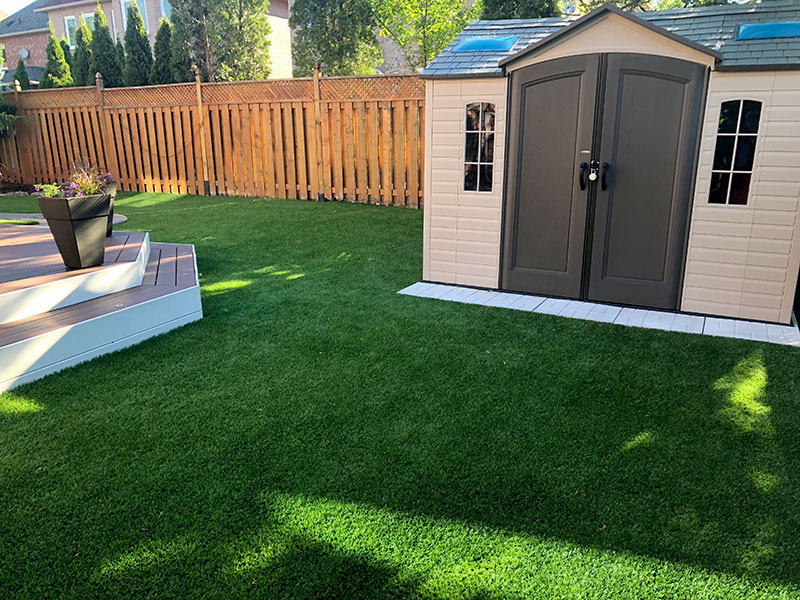 backyard with shed and turf