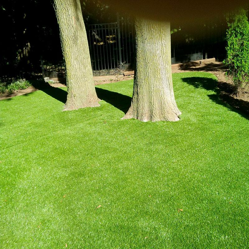 turf around trees