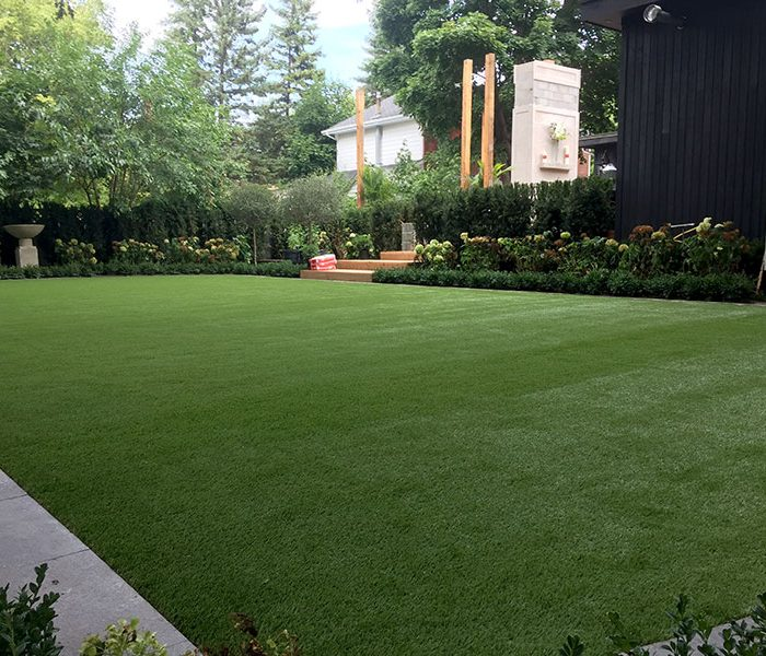 Backyard-turf-(4)
