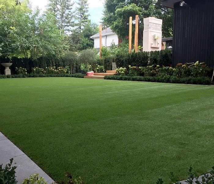 Backyard-turf-(4)